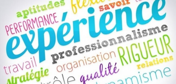 experience professionnelle